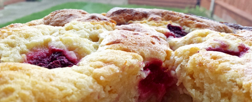 raspberry-apple-yoghurt-cake (1)