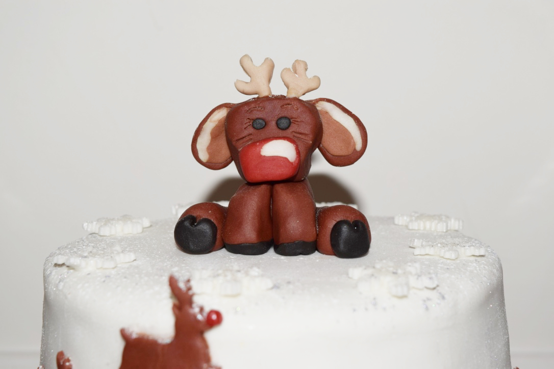 Christmas Cake 2015 2_0034_1024_Fotor