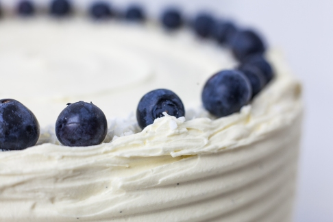 blueberry-lime-coconut-cake